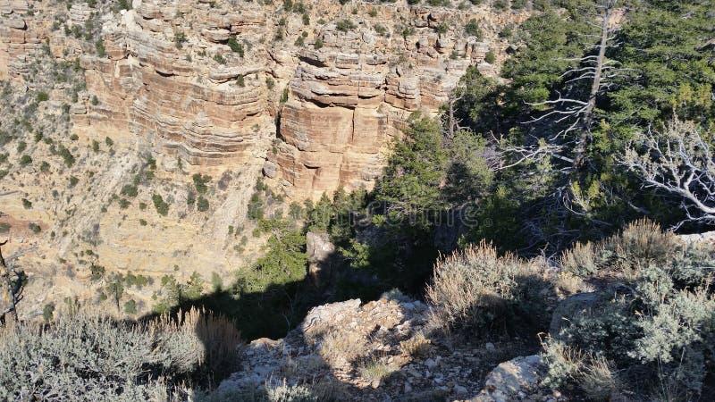 Giù nel canyon fotografie stock libere da diritti