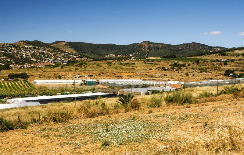 Giacimenti di cereale sulle periferie di Barcellona immagini stock libere da diritti