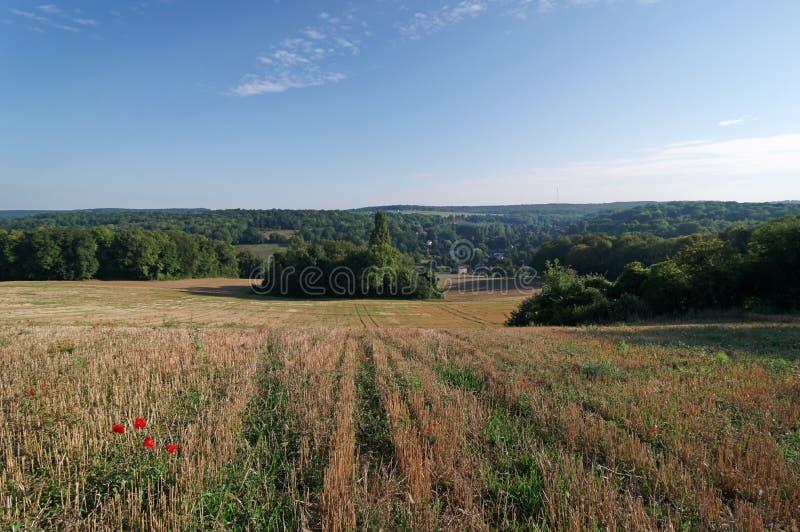 Giacimenti e colline di grano nella regione di ÃŽle de Francia fotografia stock libera da diritti