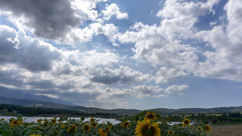 Giacimenti Kestel Bursa Turchia dei girasoli dei raggi di sole delle nuvole immagine stock
