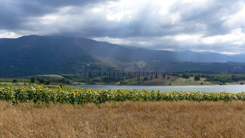 Giacimenti Kestel Bursa Turchia dei girasoli dei raggi di sole delle nuvole fotografie stock