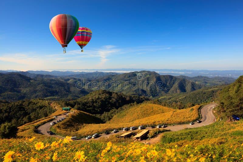 Giacimento del girasole di Tung Bua Tong Mexican del fiore della natura del paesaggio dentro immagini stock libere da diritti