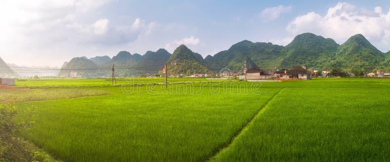 Giacimento del riso in valle intorno con la vista di panorama della montagna in valle di Bac Son, Lang Son, Vietnam fotografia stock