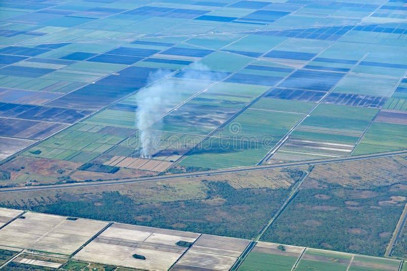 Giacimento della canna da zucchero su fuoco fotografie stock libere da diritti