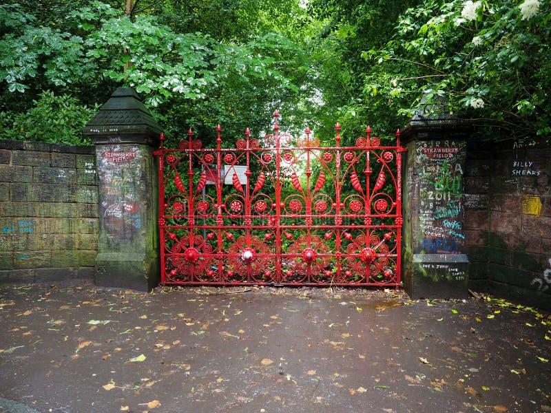 Giacimento della fragola a Liverpool fotografie stock