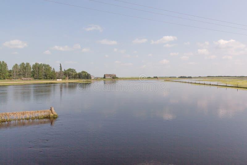 Giacimento di inondazione fotografia stock