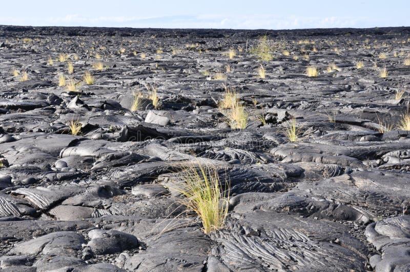 Giacimento di lava, grande isola, Hawai fotografia stock libera da diritti