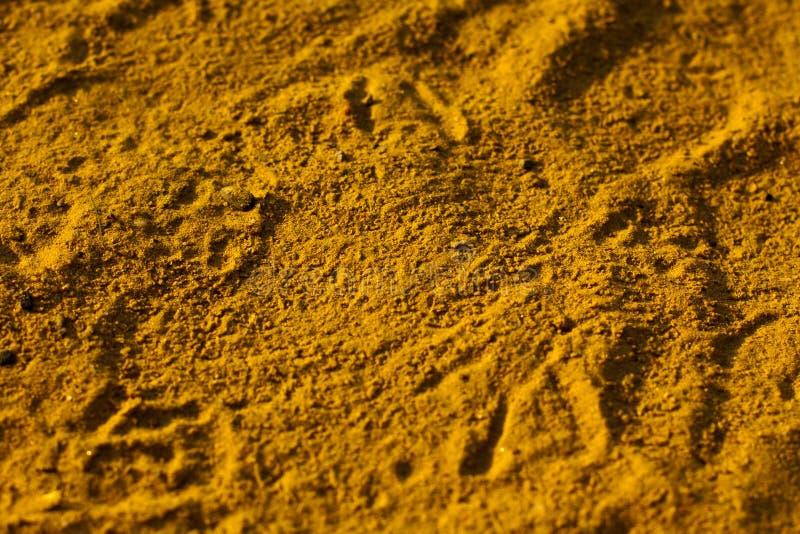 Giallo sabbia immagini stock
