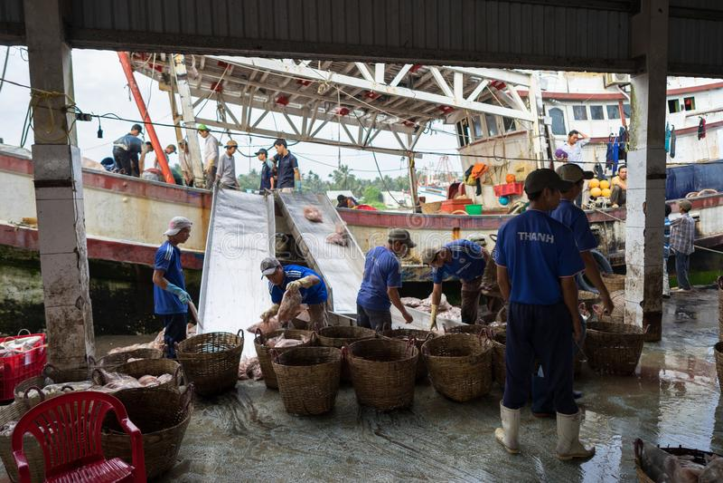 An Giang, Vietnam - 6 décembre 2016 : Travailleurs travaillant au port de pêche de Tac Cau à l'aube, je province de delta de Kong photos libres de droits
