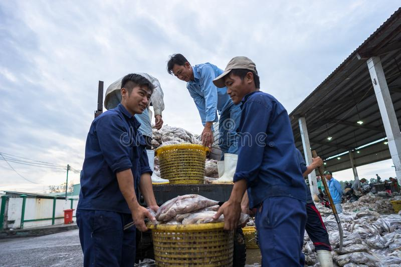 An Giang, Vietnam - Dec 6, 2016: Fish transporting activities at Tac Cau fishing port at dawn, Me Kong delta province of Kien Gian. G, south of Vietnam stock photo