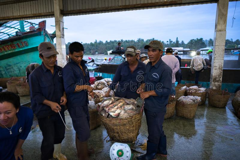 An Giang, Vietnam - Dec 6, 2016: Fish transporting activities at Tac Cau fishing port at dawn, Me Kong delta province of Kien Gian. G, south of Vietnam stock photos