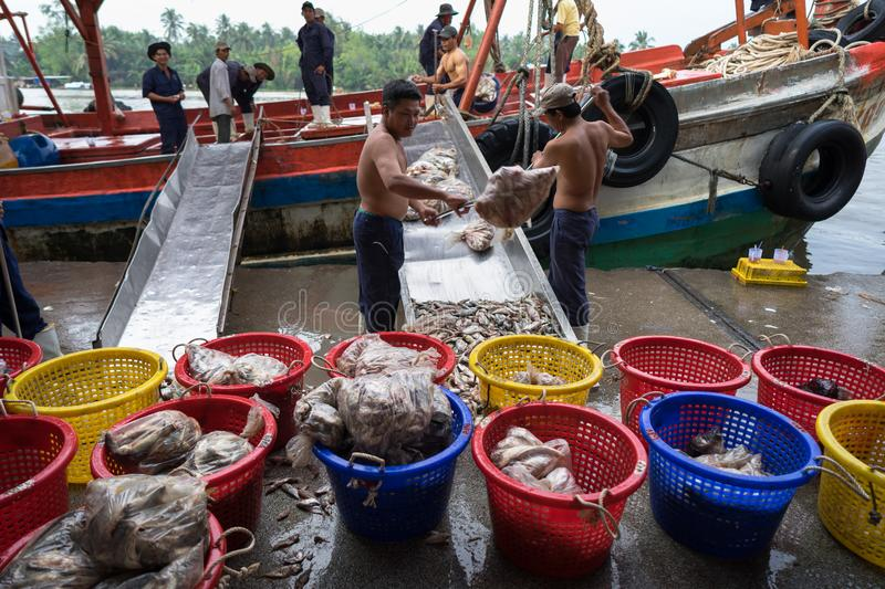 An Giang, Vietnam - Dec 6, 2016: Workers working at Tac Cau fishing port at dawn, Me Kong delta province of Kien Giang, south of V stock photo