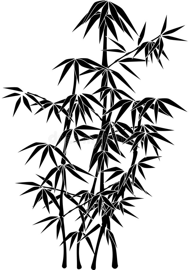 Giant Bamboo plant silhouette royalty free illustration