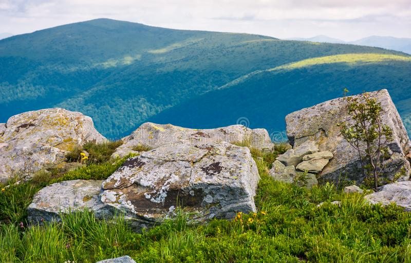 Giant boulders on grassy slopes of Polonina Runa stock image