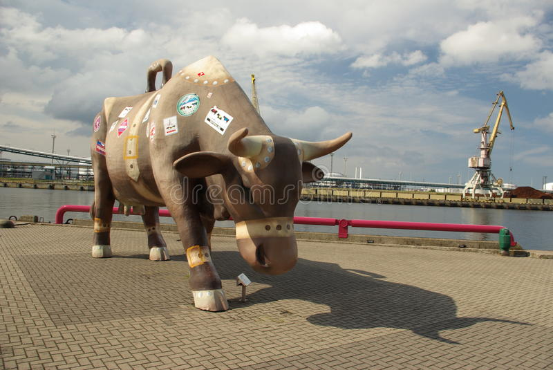 Giant Cow Figure in Ventspils Latvia. This giant cow awaits tourists in Ventspils Latvia. Mobile phone cameras are flashing all the time to capture this giant stock photos