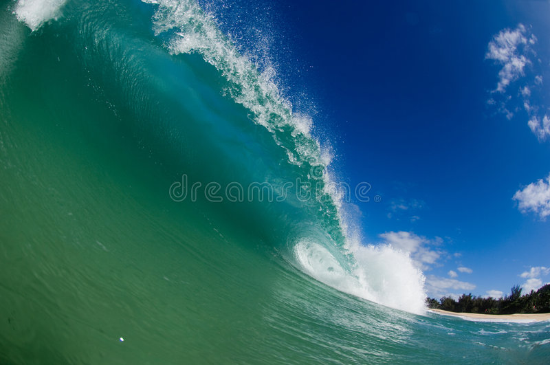 Download Giant hollow wave stock photo. Image of hawaii, sandy - 4034270