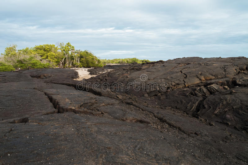 Giant lava flow with ropy pahoehoe on Fernandina. Ecuador stock photo