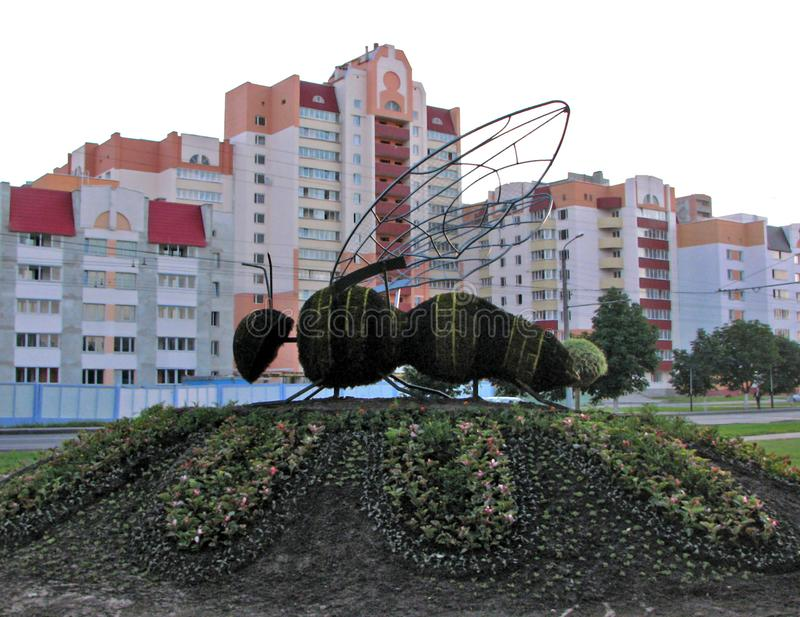 Giant floristic honey bee on the big flowerbed summer in city. Giant metal carcass floristic street art honey bee sitting on the big flowerbed sleeping quarters royalty free stock images