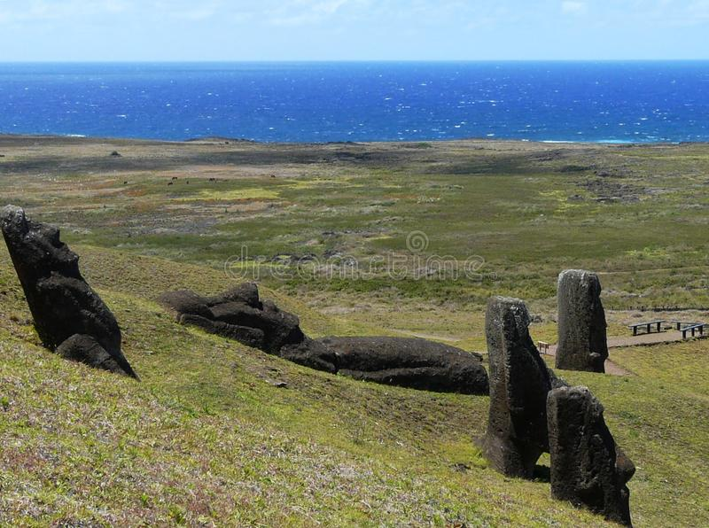 Giant statues of Moai, Rano Raraku, Easter Island. Giant monolithic statues of Moai sticking out of the ground and lying on the slopes of the extinct volcano stock photo