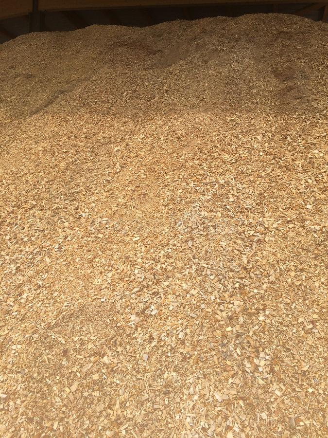 Giant Pile of Wood Chips. This huge pile of wood chips shavings are used for industrial alternative heating. They are the fuel burned in a municipal gasification royalty free stock photo