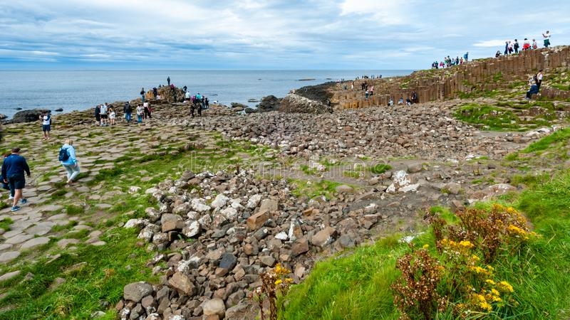 Giant`s Causeway - Bushmills - Northern Ireland. Giant`s Causeway is located in Bushmills Northern Ireland. Made up of octagonal shaped pillars, and is one of royalty free stock images