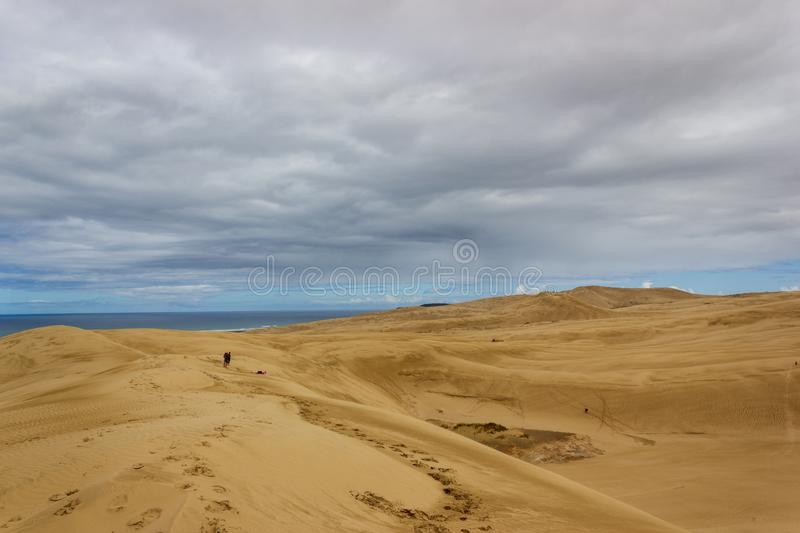 Giant sand dunes at Te-Paki on the 90 Mile beach in Northland New Zealand. Sea, aotearoa, background, beautiful, blue, environment, landscape, nature, outdoor royalty free stock image