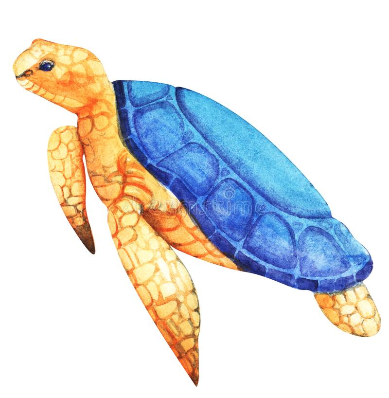 Giant sea turtle with coarse orange textural skin, large blue fish, flippers and blue eyes. Hand-drawn watercolor illustration vector illustration