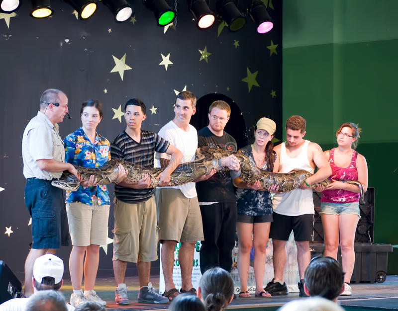 Giant Snake On Stage At Animal Show Editorial Image