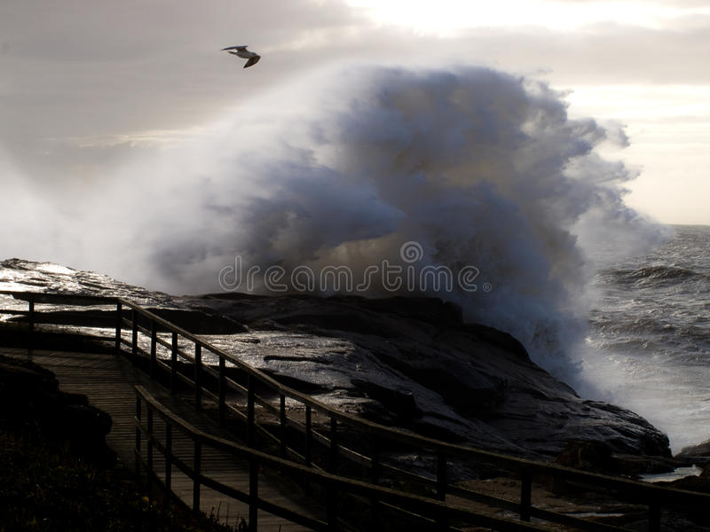 Giant wave splash coast scene stock image