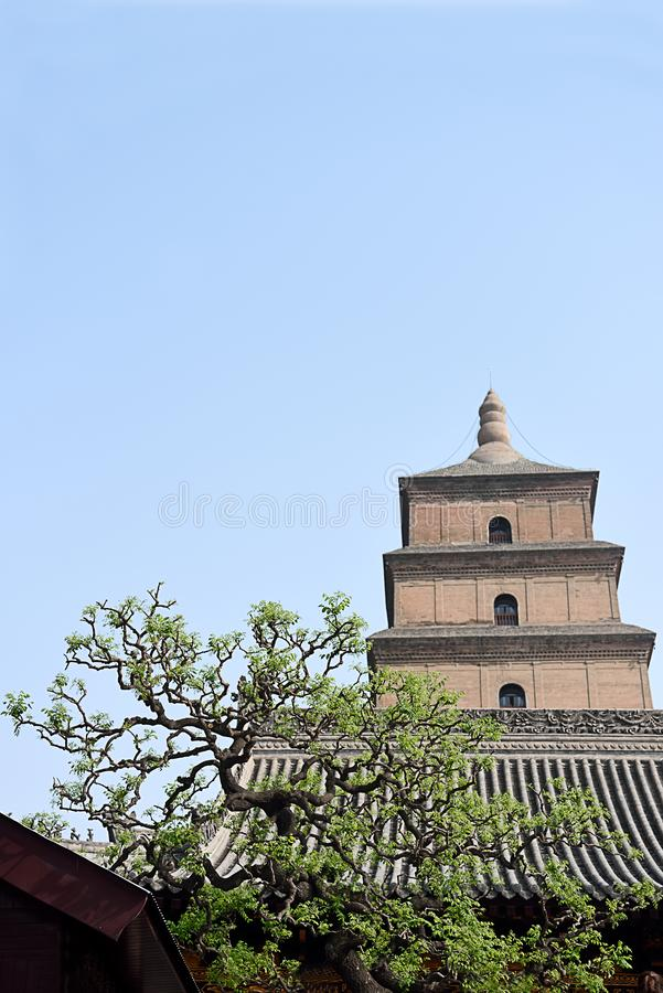 Giant Wild Goose Pagoda. The upper three  top stories of Giant Wild Goose Pagoda in Xian above the roof of temple stock image