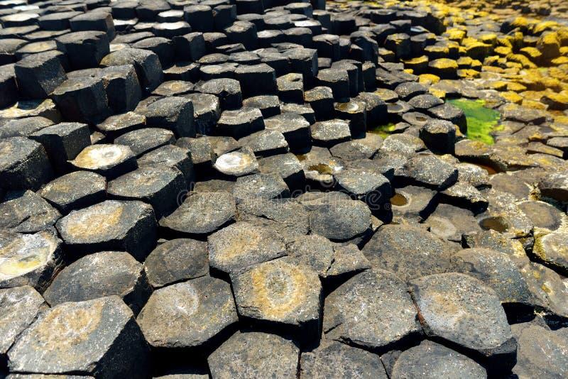Giants-Damm, ein Bereich von sechseckigen Basaltsteinen, Grafschaft Antrim, Nordirland Berühmte Touristenattraktion, UNESCO-Welt lizenzfreie stockfotografie