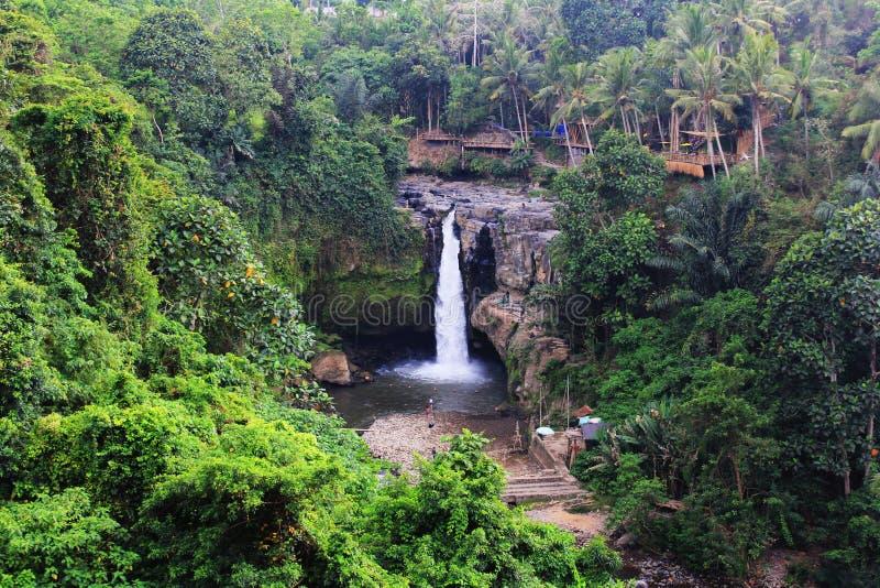 Gianyar巴厘岛Tegenungan瀑布 免版税库存照片