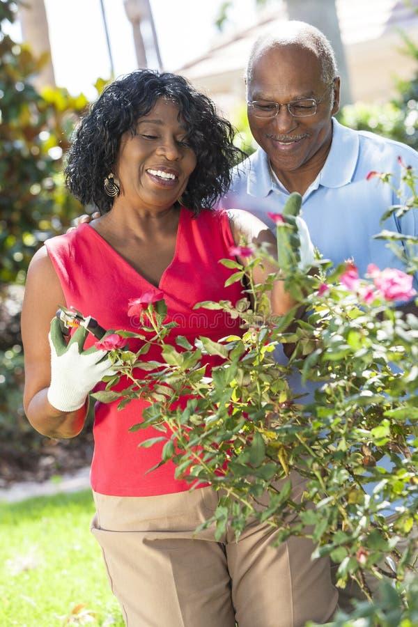 Giardinaggio afroamericano senior delle coppie della donna dell'uomo fotografie stock libere da diritti