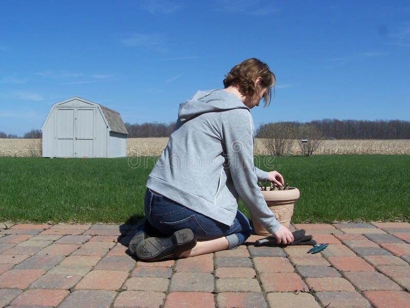 Giardinaggio della donna. fotografie stock libere da diritti