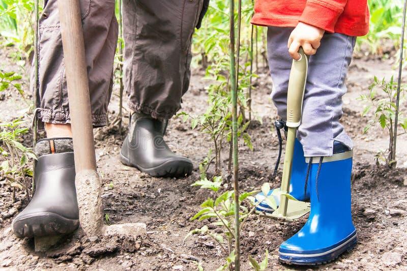 Giardinaggio Le gambe della donna e del bambino è sul suolo con il giardinaggio fotografia stock libera da diritti