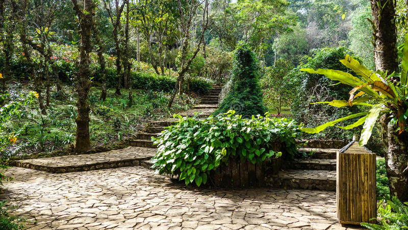 Giardini asiatici in Tailandia fotografie stock