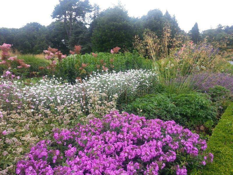 Giardini botanici immagine stock libera da diritti
