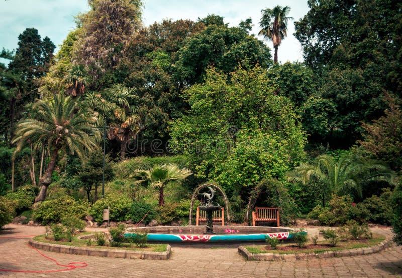 Giardini botanici a Batumi fotografia stock