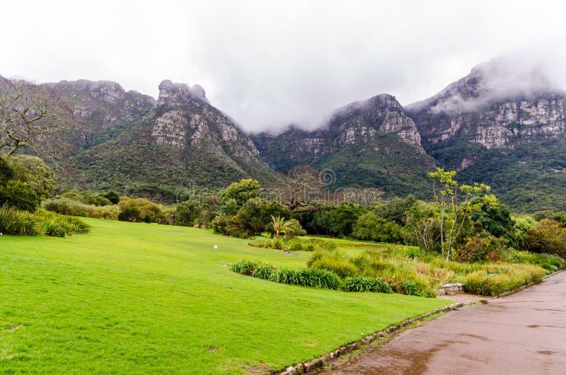 """Giardini botanici di Kirstenbosch nel †""""Sudafrica di Cape Town immagine stock libera da diritti"""
