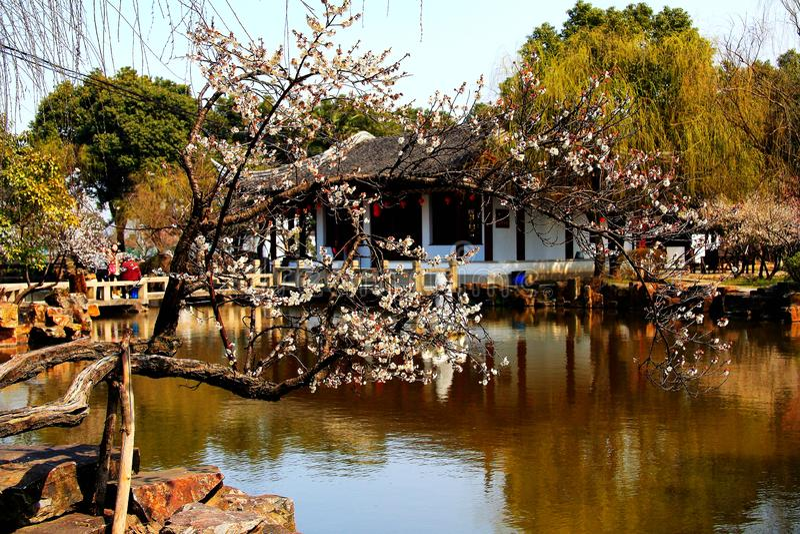 Giardini classici di Suzhou di cinese immagine stock libera da diritti