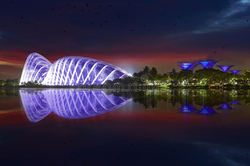 Giardini dalla baia alla notte, Singapore fotografia stock