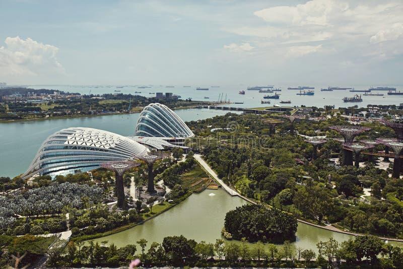 Giardini dalla baia da sopra in Singapore fotografia stock