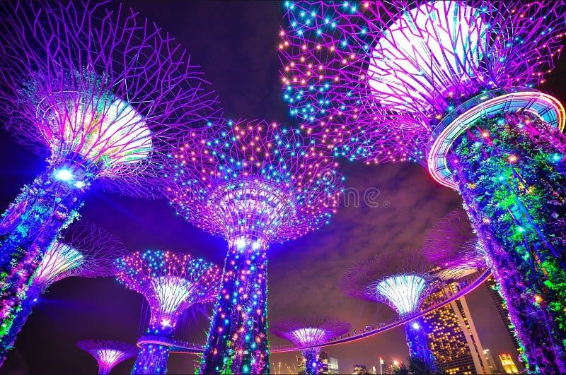 Giardini Dalla Baia A Singapore Dominio Pubblico Gratuito Cc0 Immagine