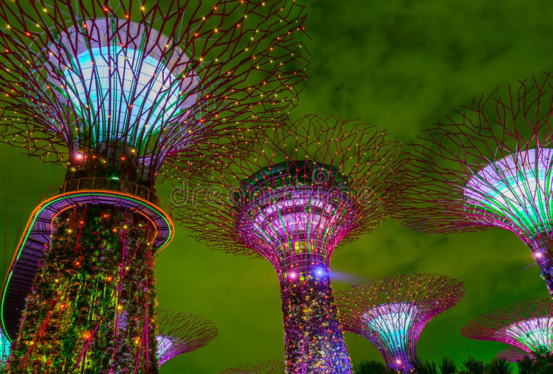 Giardini dalla baia - Singapore del parco fotografia stock libera da diritti