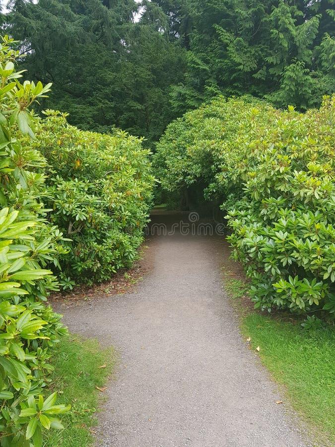 Giardini del castello di Glamis fotografia stock