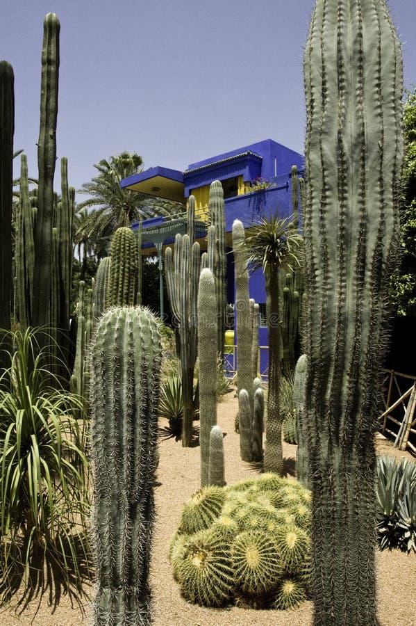 Giardini di Majorelle fotografia stock