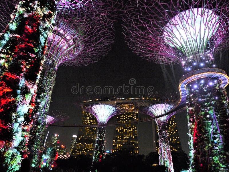 Giardini di Singapore dalla baia immagini stock libere da diritti