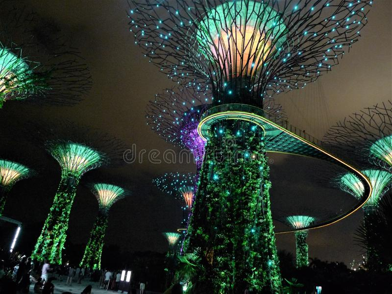 Giardini di Singapore dalla baia immagine stock libera da diritti