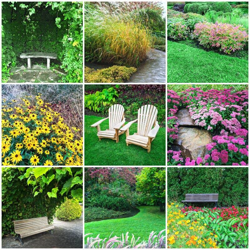 Giardini e collage dei fiori fotografia stock immagine - Giardini e fiori ...