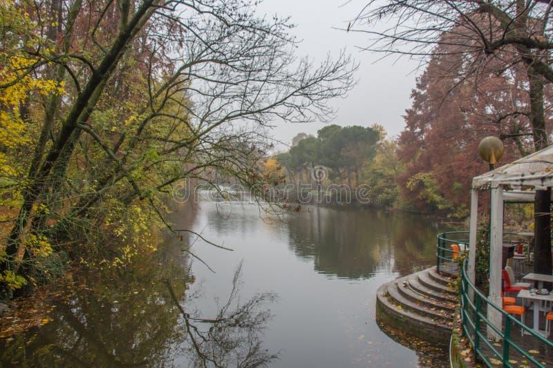 Giardini Margherita Park an einem nebeligen Tag Bologna, Emilia Romagna, Italien stockbilder